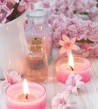 Pink spa regeling Royalty-vrije Stock Afbeeldingen