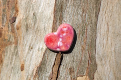 Pink Speckled Heart on Wood Bark Royalty Free Stock Images