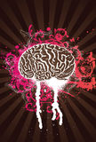 Pink Splatter Brain. Vector Illustration Royalty Free Stock Photography