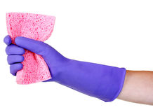 Pink sponge in hand Stock Images