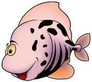 Pink Spotted Fish Royalty Free Stock Photography