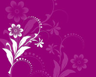 Pink Spring Floral Ornament Stock Image