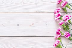 pink spring flower on wooden background stock photos