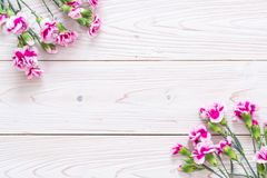 pink spring flower on wooden background royalty free stock photos