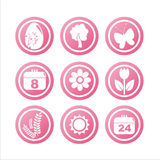 Pink spring signs Stock Image