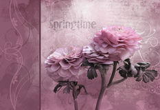 Pink spring time flower - Artistic background for your own creations stock illustration
