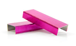 Pink staples Stock Photo