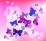 A pink stationery with a group of butterflies Royalty Free Stock Images