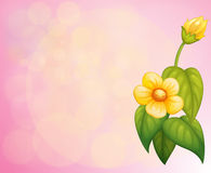 A pink stationery with a yellow flower Royalty Free Stock Photos