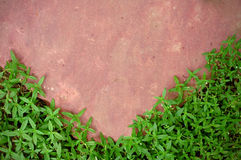 Pink stone and green grass Royalty Free Stock Photography