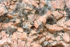 Pink stone texture. Texture of stone consisting of white and pink quartz Stock Image