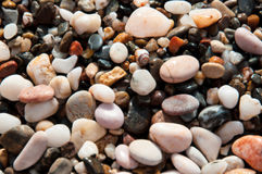 Pink stones on the beach. Pink sea pebbles on the beach Royalty Free Stock Photography