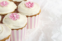 Pink striped cupcakes horizontal. Pink and white striped cupcakes on white paper background Royalty Free Stock Images