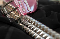 Pink Studed Belt Stock Photo