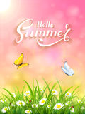 Pink Summer background with grass and Sun Royalty Free Stock Image
