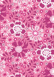 Pink summer flowers. Vector illustration of a floral repeat pattern Stock Images