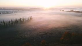 Pink sunrise out of city countryside. Autumn foggy sunrise. Aerial drone video footage. Fall beauty nature stock video