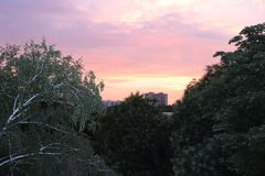 Pink sunset from the balcony royalty free stock photo