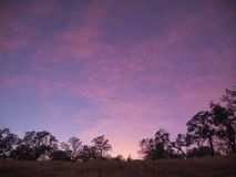 Pink Sunset in California Royalty Free Stock Image