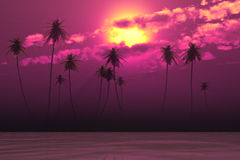 Pink sunset in clouds Royalty Free Stock Photo