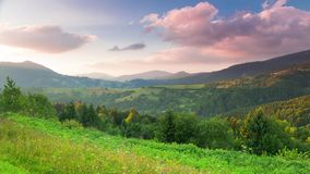 Pink Sunset Clouds over Forested Mountains. Time Lapse 4K. Low mountains covered with dense forests and meadows with flowers. The setting sun lights the stock video footage