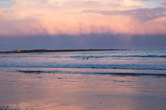 A pink sunset fills in storm clouds over the ocean. The sun was setting as storm clouds moved out over the beach in Newport, Rhode Island. Pink sunset over the royalty free stock image