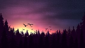 Free Pink Sunset In A Pine Forest With A Silhouette Of Trees, Starry Sky And Birds Royalty Free Stock Photo - 183862025