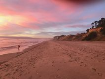 Pink sunset royalty free stock photo