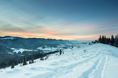Pink sunset in mountains. Beautiful winter forest landscape, majestic view on a pine trees covered with snow Royalty Free Stock Images