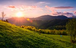 Pink sunset over the mountains in springtime. Gorgeous Carpathian countryside. beautiful rural scene with fields and trees Royalty Free Stock Images