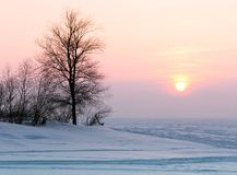 Pink sunset over the snowy plain stock photo