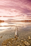Pink Sunset Reflecting on Water Royalty Free Stock Images