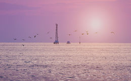 Pink sunset sky with crane on water surface with birds Stock Photography