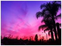 Pink sunset. In southern california royalty free stock images