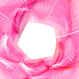 Pink swirl Stock Photo