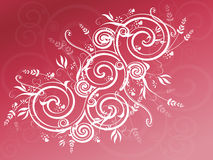 Pink Swirl Background Stock Photos