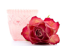 Pink tea light holder with rose Stock Images
