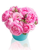 Pink tea roses bouquet in vase isolated. Royalty Free Stock Image