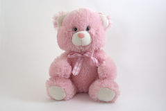 Pink teddy bear. Pink toy bear  on the white background Royalty Free Stock Images