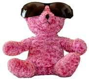 Pink Teddy Bear in Shades Stock Photo