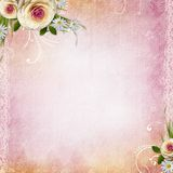 Pink Texture Background Stock Photography
