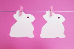 Pink theme two bunny rabbit shape Easter cards Stock Image