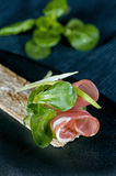 Pink thin slice of ham on a piece of dry bread with herbs and onions royalty free stock photo