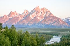 Pink tinted mountains in Grand Teton National Park. royalty free stock images