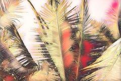 Pink toned coco palm leaf on sky background. Tropical nature digital illustration. Exotic island landscape. Green palm leaf banner template. Tropical paradise stock illustration