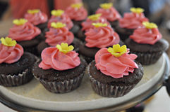 Pink topped cupcakes. Cupcakes for sell by one of the newly open shop in town royalty free stock image