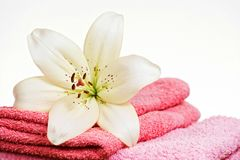Pink towel and white lily flower Royalty Free Stock Image