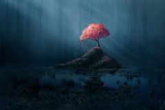 Pink tree in blue forest Stock Photo