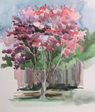 Pink tree illustration in sketch style Stock Images