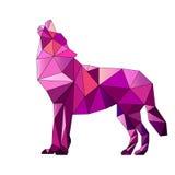 Pink triangle wolf Stock Photo